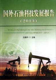 国外石油科技发展报告(2013)