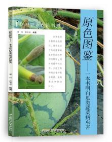 原色图鉴:一本书明白瓜类蔬菜病虫害/新型职业农民书架
