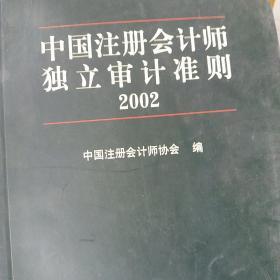 中国注册会计师独立审计准则.2002