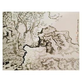 大来文化 金心明 真迹字画 当代水墨大师 知名画家作品 收藏国画宣纸包邮00155