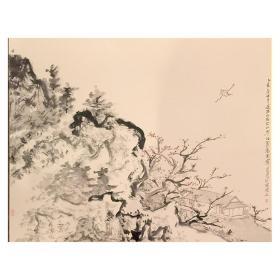 大来文化 金心明 真迹字画 当代水墨大师 知名画家作品 收藏国画宣纸包邮00156