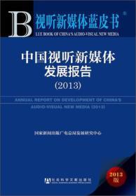 中国视听新媒体发展报告(2013)