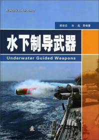 精确制导技术应用丛书:水下制导武器