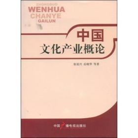 中国文化产业概论