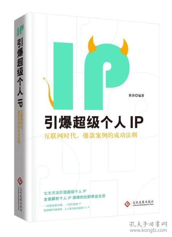 引爆超级个人IP(互联网时代,爆款案例的成功法则)