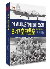 B-17空中堡垒 美军第95轰炸机大队传