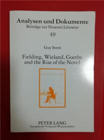 Fielding, Wieland, Goethe and the Rise of the Novel (菲尔丁、维兰德、歌德与小说的兴起)