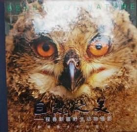 《自然之美:程春新疆野生动物摄影:中英对照》