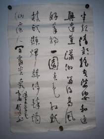 【名人字画】苏州顾逸书法托片47*70CM