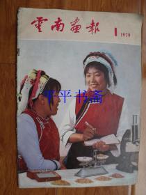 云南画报1979.1【创刊号】(8开)