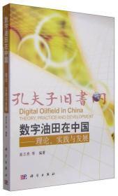 《数字油田在中国:理论、实践与发展》