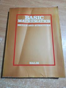 BASIC MATHEMATICS SKILLS AND STRUCTURE(基本数学技能和结构)