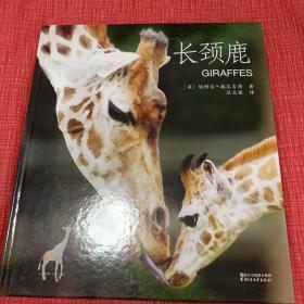 动物小百科:长颈鹿