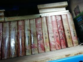 中国抗日戦争时期大后方文学书系