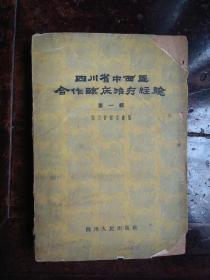 四川省中西医合作临床治疗经验(第一辑)