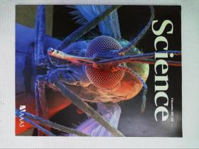 英文科学杂志 Science 2011/12/9 NO.6061 外文原版英国著名杂志
