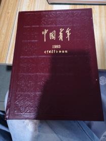 中国青年1993年杂志