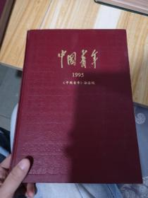 中国青年1995年杂志