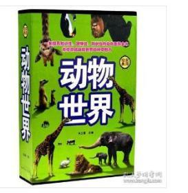 正版动物世界    正版动物世界    90226H