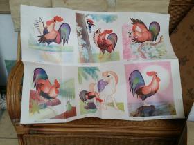 教学挂图美丽的公鸡看图学文整开