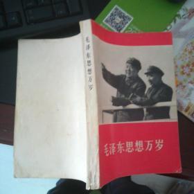 毛泽东思想万岁【封面 毛林】有林彪题词32开313页【特别少见】