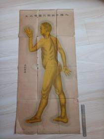 人体十四经穴图像之三