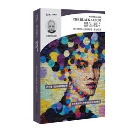 哈尼夫·库雷西系列:黑色唱片