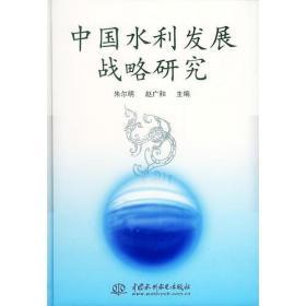 中国水利发展战略研究(特价/封底打有圆孔)