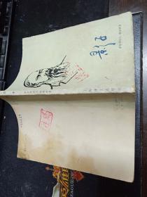 影子  32开本133页  馆藏