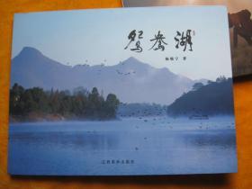 鸳鸯湖/灵动/动物王国肯尼亚 3册合售