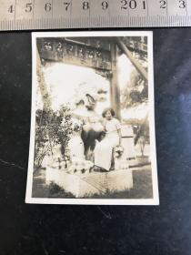 民国时期穿旗袍的美女在牌楼下的石狮子上留影老照片