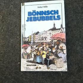 德文原版 BÖNNSCH JEBUBBELS(书内有黑白插图)