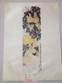 吴昌硕:葫 芦(1921年作)(册页26*35cm)折叠寄送