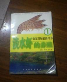 淡水虾的养殖1