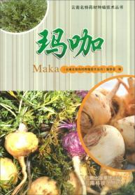 玛咖/云南名特药材种植技术丛书
