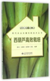 科技惠农一号工程:西葫芦高效栽培