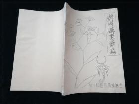 淅川县医药志·