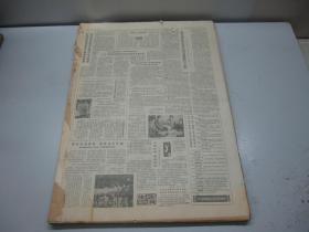 人民日报1985年11月(2日-29日)