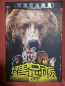 绝地反击的熊