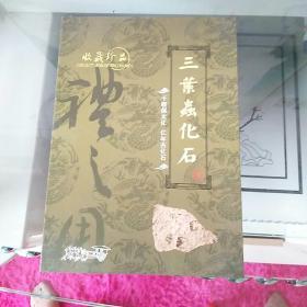套盒 《三叶虫化石》收藏珍品 千载儒文化 亿年古化石 品好