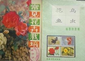 Z057 常见花卉栽培(82年1版3印、馆藏)