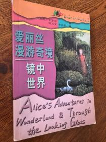 爱丽丝漫游奇境 镜中世界