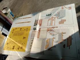 造纸术的发明(中国历史教学挂图古代史部分)全开  64年5印