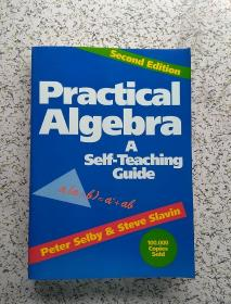 Practical Algebra: A Self-Teaching Guide, 2nd Edition