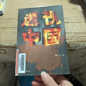 透视中国 第一卷