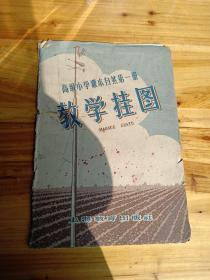 高级小学课本 自然第一册教学挂图册  4张全