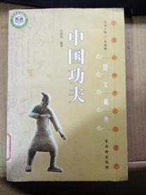 中国非物质文化遗产文藏典丛书《中国功夫》