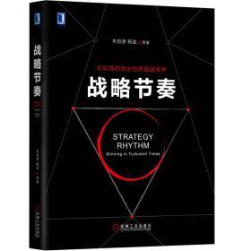 战略节奏 清华大学朱恒源教授 杨斌教授新力作 市场营销战略营销管理书籍共享战略蓝军战略   9787111595977
