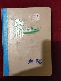 向阳 老日记本 1971年 有字