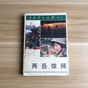 当代军人风貌报告文学丛书  两岳雄狮